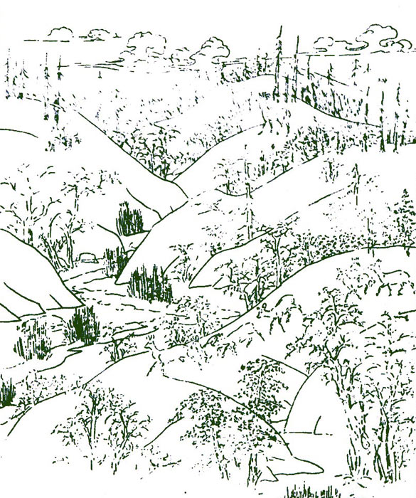 科普手绘背景图
