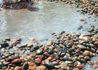 人类离不开洁净的水