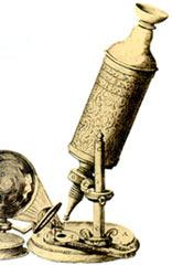 列文虎克自制的显微镜
