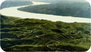 黄河两岸的水土保持措施