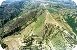 黄土高原上的水土保持措施