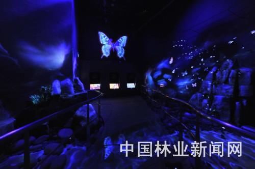 国家动物博物馆_中国科普博览