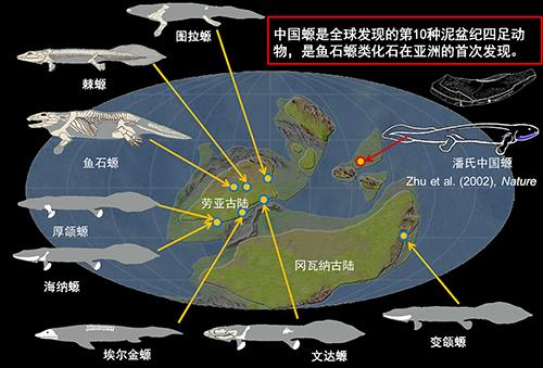 鱼石螈类四足动物的全球分布
